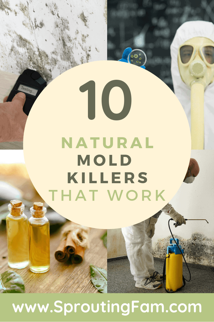 mold killers