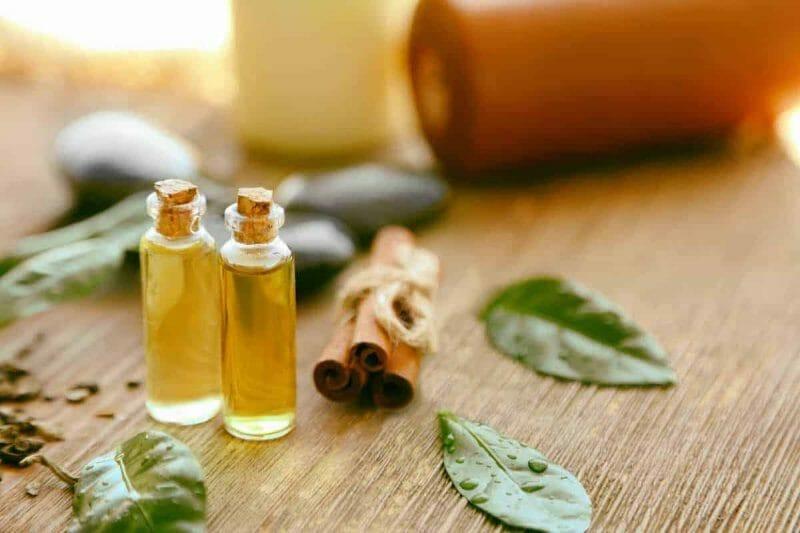 tea tree oil mold killer