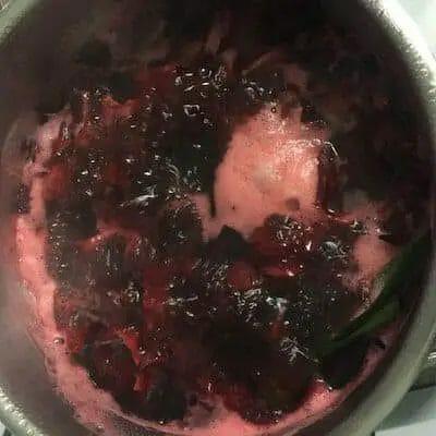 Hibiscus Tea Recipe - boiling version
