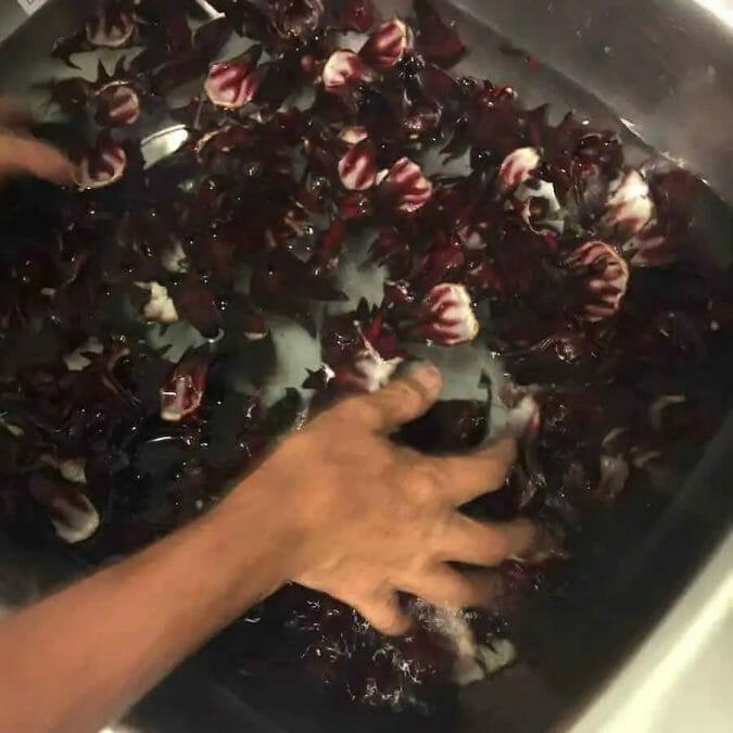 Roselle juice recipe