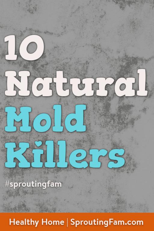 natural mold killers image for pinterest
