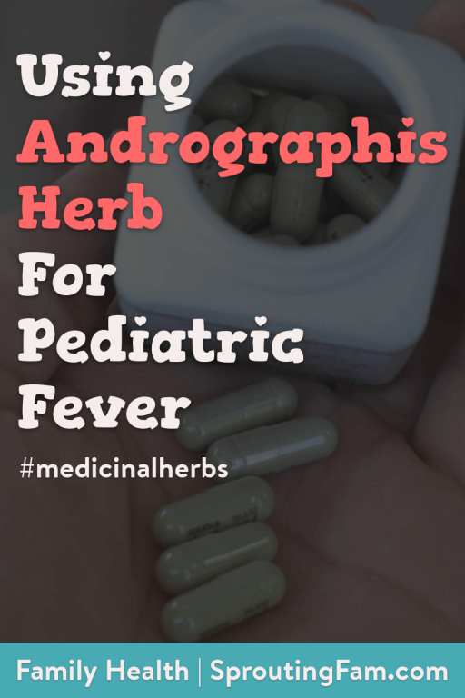 andrographis herb for pediatric fever