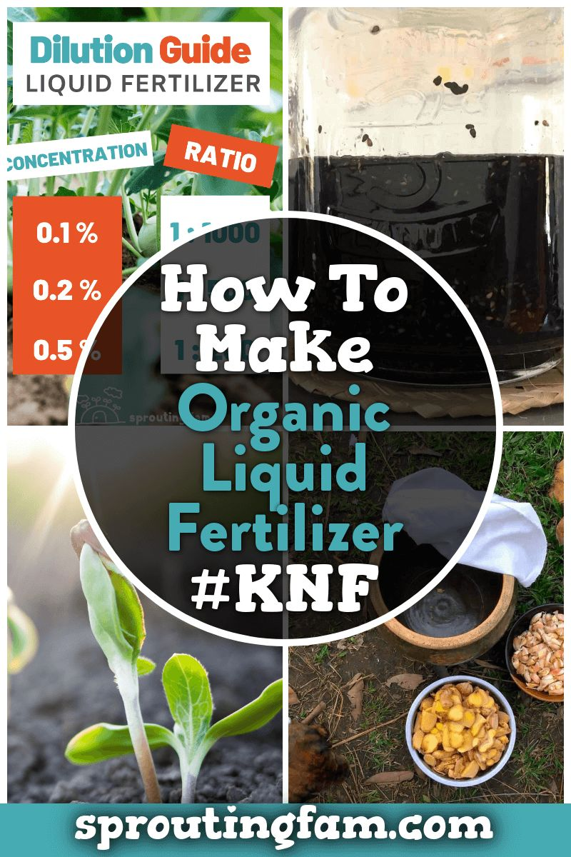 organic liquid fertilizer Pin for Pinterest